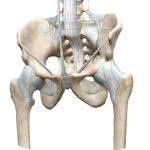 骨盤帯沖縄理学療法セラピーベースアップセミナー