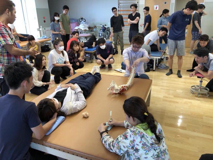 沖縄徒手理学療法研究会のサポートをさせていただきました。